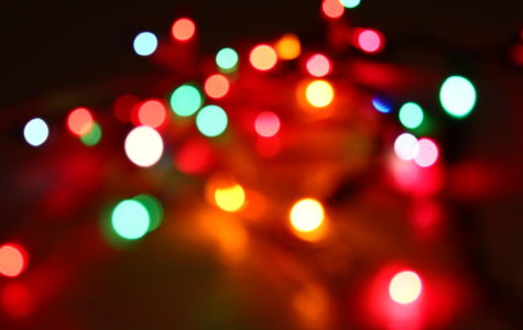 Falcon Lens Photography Series: Christmas lights gallery