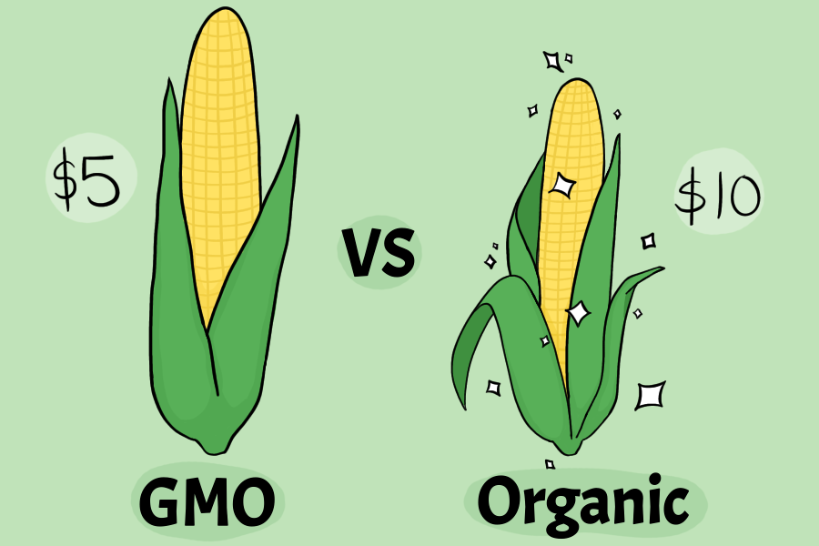 The debate over the health of GMO vs. organic foods is one that consumers continually have. Original art by Evanthia Stirou.