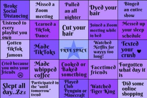 This bingo features 25 things (some normal, others not so much...) you have possibly done during quarantine.