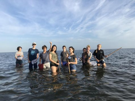 The Argentinian students go dip-netting with the Marine Science class