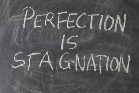 Perfection is stagnation: true or false? Let