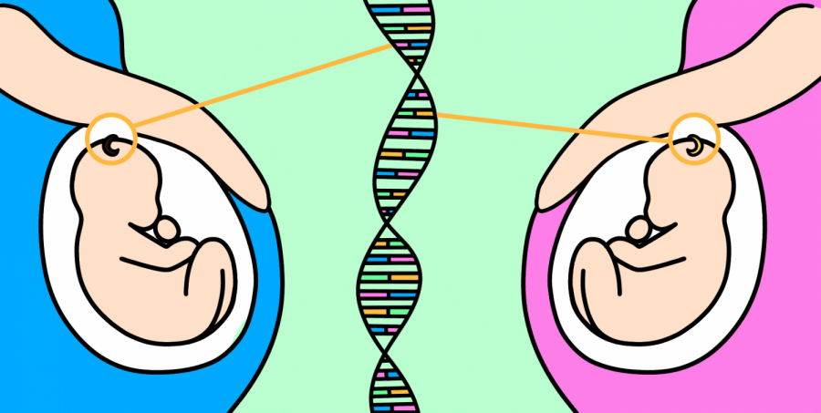 Genetic engineering is the future of our society, and it's not a good thing.